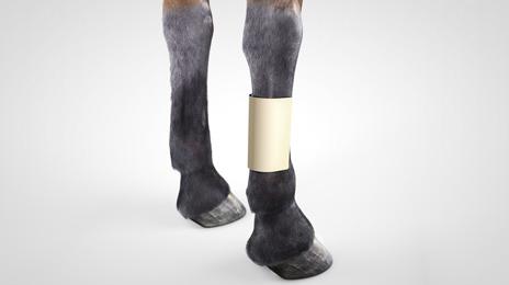 vet-horse-foam-dressing-2